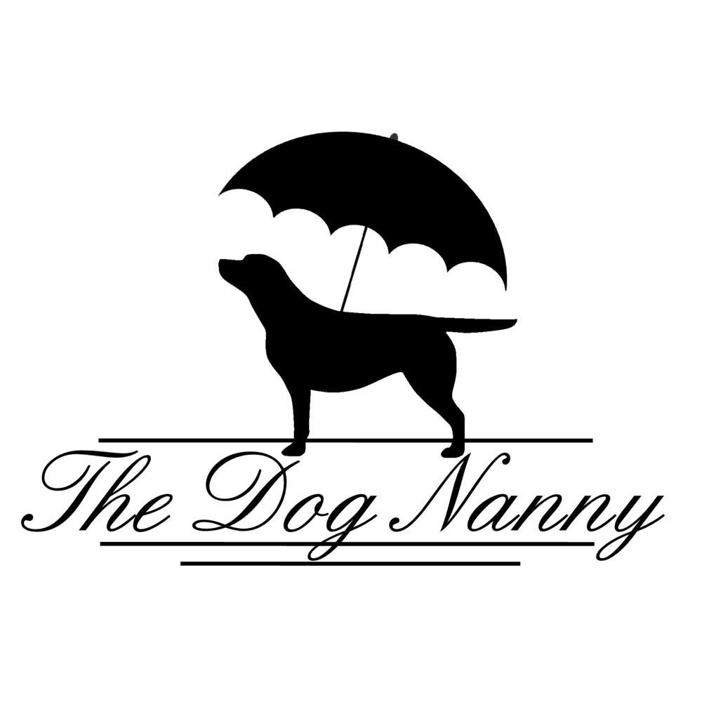Dog Training Maple Ridge